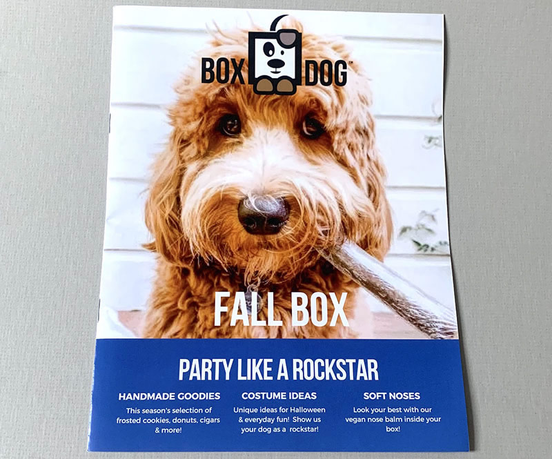 BoxDog Fall Box
