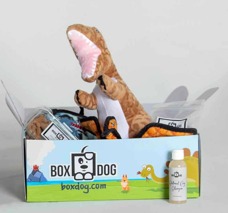 BoxDog Review