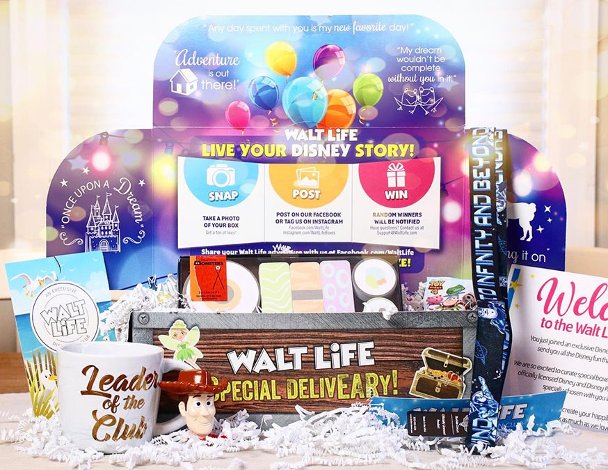 Walt Life Monthly Subscription Box